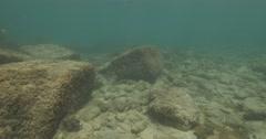 Underwater Caesarea antiquities big brick 4K Stock Footage