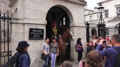Tourists posing with a horse mounted Guard (in 4K) on Whitehall, London, UK. Stock Footage