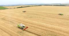 AERIAL 4K combines harvesting on the fields Stock Footage