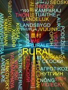 Rural multilanguage wordcloud background concept glowing - stock illustration