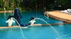 Swimming pool of a luxury villa Stock Footage