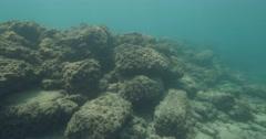 Stock Video Footage of Underwater Caesarea antiquities  Harbor 4K