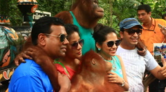 Tourists taking pictures with orangutans in zoos, Bangkok, Thailand Stock Footage