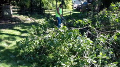 Forestry worker uses a chain saw to cut up a tree that has fallen - 10 - stock footage