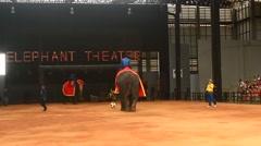 The show of elephants, Pattaya, Thailand Stock Footage