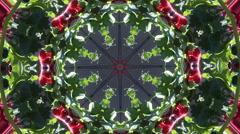 Abstract poppy flowers kaleidoskop pattern Stock Footage