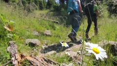 Couple hiking on path with flower Stock Footage