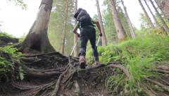 Hiker with backpack and sticks Stock Footage