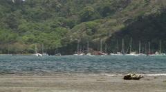 Bay with yachts and catamaran sailboats Stock Footage
