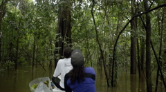 Navigating in flooded forest Stock Footage