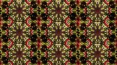 Abstract tiles poppy flowers kaleidoskop pattern Stock Footage