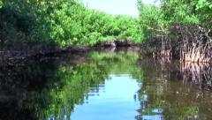 Stock Video Footage of Airboat Ride in canal in the Everglades, Florida