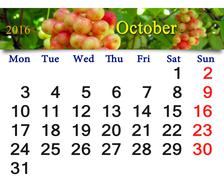calendar for October 2016 with branch of schisandra - stock illustration