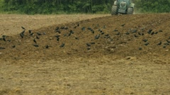 Tractor ploughing a field in germany Stock Footage