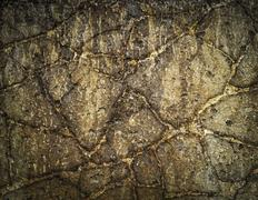 Stock Photo of abstract old concrete panel