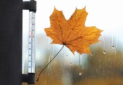 Meteorology, forecasting and autumn weather season concept - thermometer and  Stock Photos