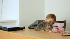 Kitten For Children Stock Footage
