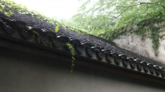 Chinese ancient building tile in the rainy day,with green plants Stock Footage