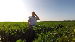 Stock Video Footage of Agronomist talking on the phone in the field of soybeans. Irrigation waters.