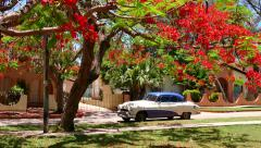 Old Vintage Cuban Car 1950s 50s Under Tree Varadero Cuba - stock footage