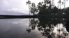 Richardson Beach Park ,Hilo Hawaii Stock Footage