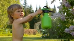 little kid watering lilac flowers from a spray in the garden - stock footage