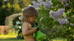 Little boy watering lilac flowers Stock Footage