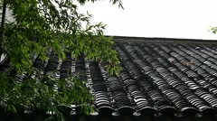 Chinese ancient building tile in the rainy day,with green plants - stock footage