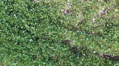 Aerial shot of farm land 3 Stock Footage