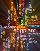 Eggplant multilanguage wordcloud background concept glowing Stock Illustration
