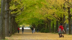 People walking through the park on a cloudy day Stock Footage