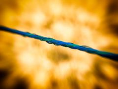 Tightrope blue fire Stock Photos