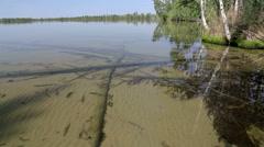 lake in the wild Siberian taiga. - stock footage