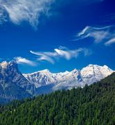 Himalayas and forest. India - stock photo