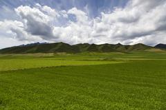 Mountain and field in Gansu province, China - stock photo