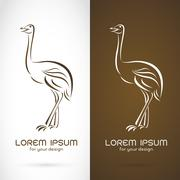 Vector image of a ostrich design on white background and brown background - stock illustration