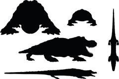 Reptiles alligator Stock Illustration