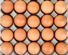 Close up egg in packet background texture Stock Photos