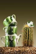 Stock Photo of Prickly tea-party.