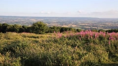 West country views Quantock Hills Somerset England UK PAN Stock Footage