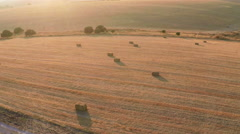 Aerial view of Hay bales on the field after harvest at sunset Stock Footage