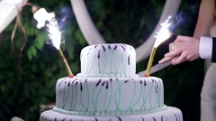 Bride and groom cut the wedding cake. Wedding cake with fireworks. Stock Footage