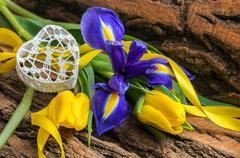 Blue iris and yellow tulip flower with decorative heart Stock Photos