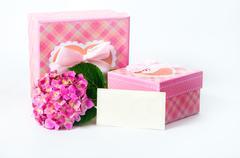 hydrangea flower and gift box - stock photo