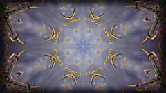 Background high contrast kaleidoscope pattern made from beachgrass and sky 4k Stock Footage