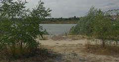 Trees are shaken by wind on a lake's shore Stock Footage