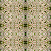 Hoya flowers seamless pattern background Stock Photos