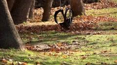 Tyre swing sways in the Autmn breeze Stock Footage