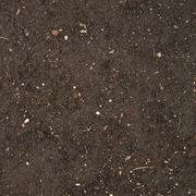 Earth texture with a small stone admixture - stock photo