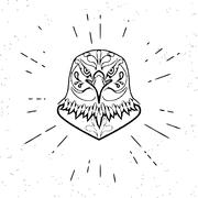 Dangerous eagle Stock Illustration